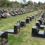 お墓は人口が増えている時代の産物である