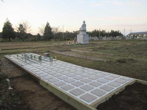 墓じまいの改葬先としての樹木葬